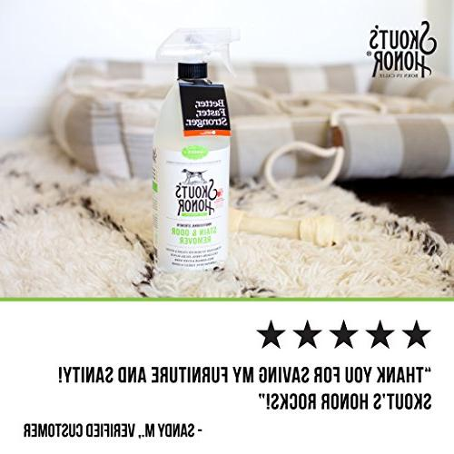 Skout's Stain and Odor Remover size: Fl